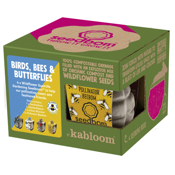 Birds, Bees & Butterflies Seedbom Gift Set