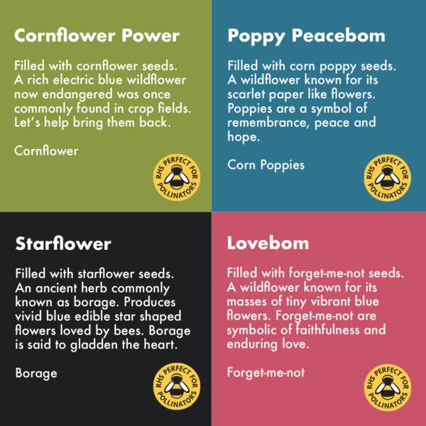 Wildflower Wonder seeds
