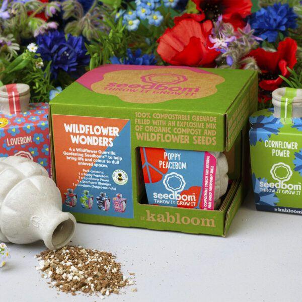 Wildflower Wonders Seedbom gift set